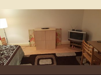 Massive room to rent for professional weekly £125 from...