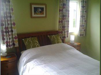 Spacious room in quiet area