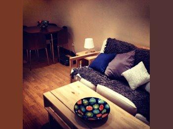 A Recently Modernized One Bedroom Flat