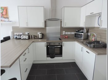 Modern, professional property in Woodston for couple