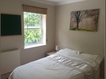 Double bedroom with own shower/toilet in shared town house....