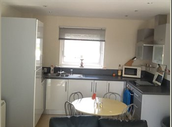 EasyRoommate UK - Double room close to Train Station and Town Centre, Basingstoke - £600 pcm
