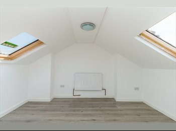 Newly Refurbished Property - 1 Room Available NOW