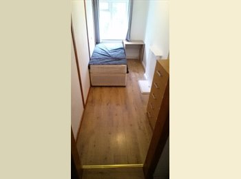 p a BIG and CHEAP single room available now