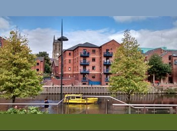 Double room in a new flatshare  by the canal