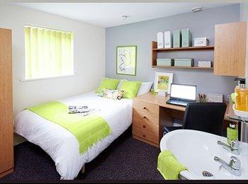 1 x Premium Deluxe Student Room in Lancaster Town Centre