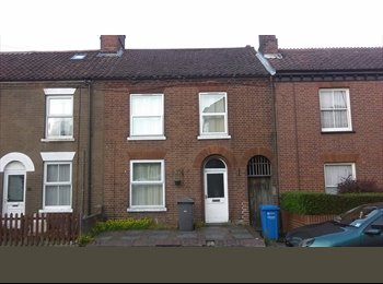 EasyRoommate UK - Angel Road Double room close to city centre, Norwich - £400 pcm