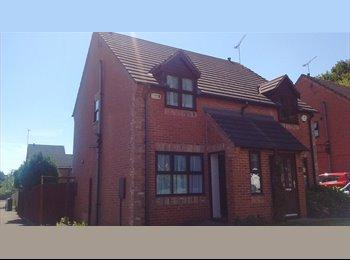 EasyRoommate UK - Student Room for Rent, Philadelphia - £420 pcm