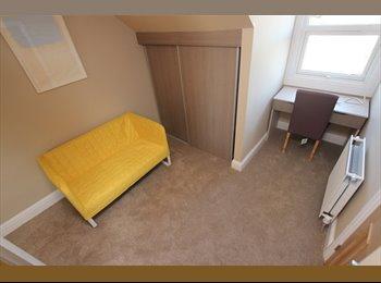 Astonishing room available