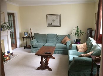 Spare Double Room with house share including garden