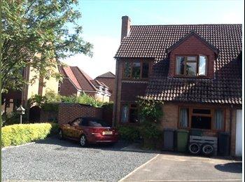 EasyRoommate UK - Large Double Room, Pamber Heath - £550 pcm