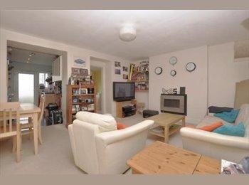 EasyRoommate UK - Single Room Available Hotwells/Clifton Houseshare, Bristol - £500 pcm