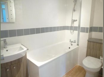 EasyRoommate UK - Double room to let Hemel Hemstead, Hemel Hempstead - £500 pcm