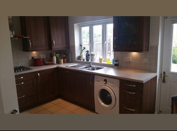 EasyRoommate UK - Large, bright double bedroom available in St Leonards, Exeter - £400 pcm