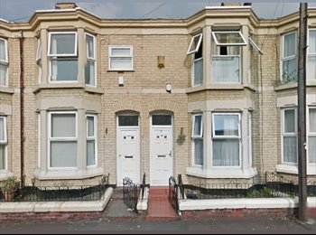 EasyRoommate UK - 2 double rooms available in large student house on outskirts of city centre, Liverpool - £340 pcm