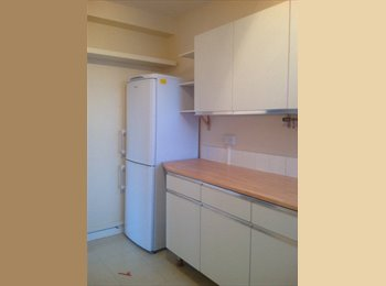 EasyRoommate UK - Available 1 double and single room at Chalk Farm, London - £1,340 pcm
