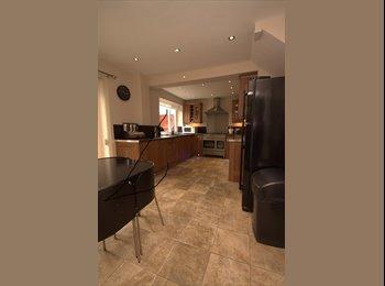 Double Room in Kingston Park £450.00 pcm