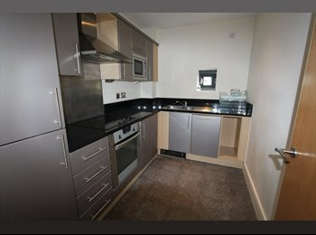 EasyRoommate UK - 3 ROOMS AVAILABLE ZONE 1! NEWLY REFURBISHED FLAT! DON'T WAIT! GREAT LOCATION! , London - £840 pcm