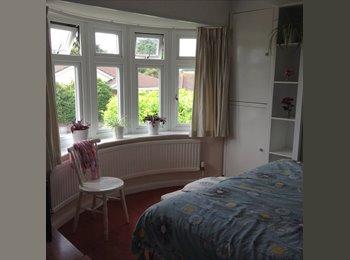 EasyRoommate UK - Large  bright double  room to rent , Dawlish - £370 pcm