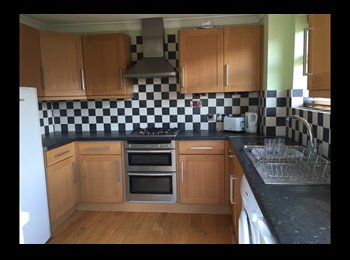 EasyRoommate UK - Ensuite double occupancy for working professionals, Basildon - £500 pcm