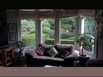 EasyRoommate UK - Edwardian House in Penylan Cardiff, Cardiff - £420 pcm