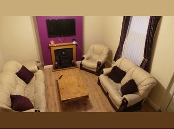 South Shields house spare Room to LET.