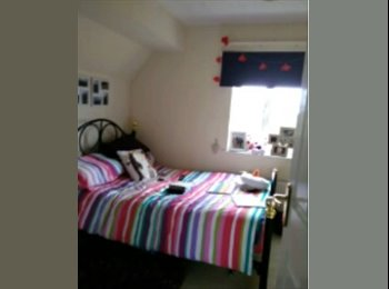 Double bedroom available in lovely 3-storey house