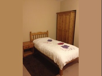 newly decorated room for rent in friendly home