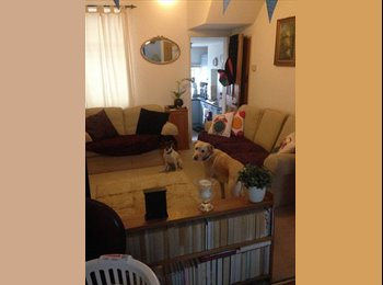 EasyRoommate UK - Fab Double Room to Let in St James, Exeter - £500 pcm