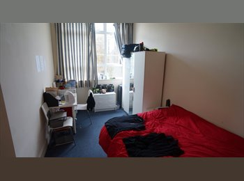 Gorgeous room available in the Square