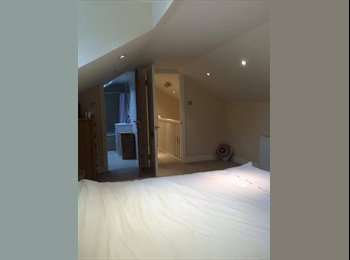 Spacious double attic ensuite room available