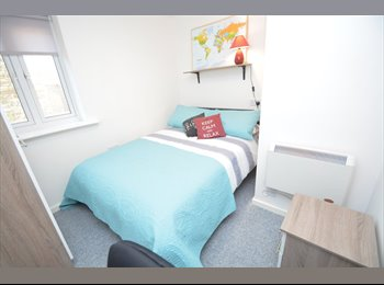 Amazing Student Accomodation, No Deposit Required!