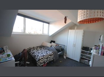 Luxurious Student Acoomodation- 2 Ensuite rooms available