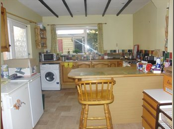 EasyRoommate UK - Double Room in Relaxed, Friendly Shared House, Exeter - £350 pcm
