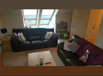 Double room to rent in beautiful city centre flat,