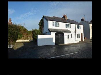 EasyRoommate UK - Lovely Double Room To Rent , Deeside - £350 pcm