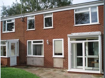EasyRoommate UK - Large double room in pleasant shared house, Redditch - £400 pcm