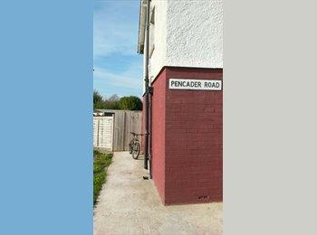 EasyRoommate UK - 3 bed house, Cardiff - £325 pcm