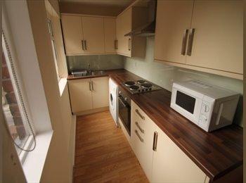 EasyRoommate UK - Modern Student House in Hyde Park, Leeds, Leeds - £260 pcm