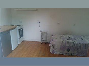 EasyRoommate UK - Studio room, Hayes - £550 pcm