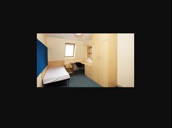 EasyRoommate UK - University Accomodation Preston, Preston - £336 pcm