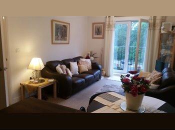 EasyRoommate UK - Stylish Apartment for Professional, Llantwit Fardre - £375 pcm