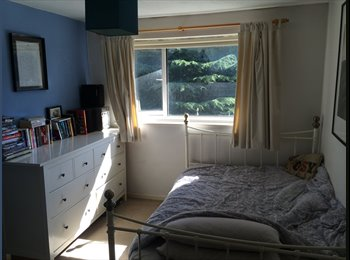 EasyRoommate UK - Large double room available, Birmingham - £450 pcm