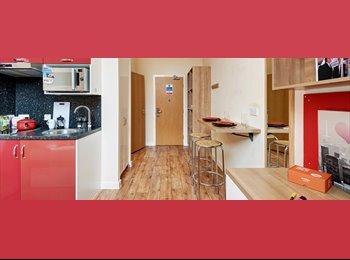EasyRoommate UK - Student studio in Chester, Chester - £572 pcm