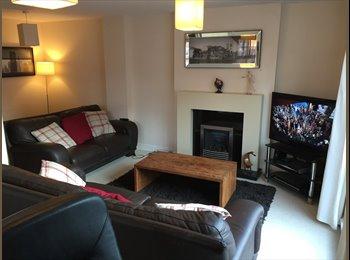 EasyRoommate UK - Social House, Derby - £350 pcm