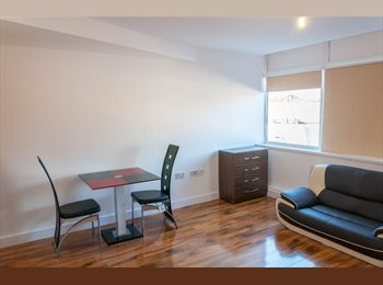 Modern studio Flat to rent in Ilford including Gas &...