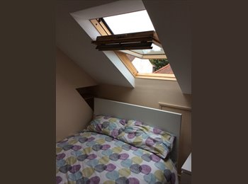 EasyRoommate UK - Lovely rooms available to let just off of Constitution Hill, Norwich - £400 pcm