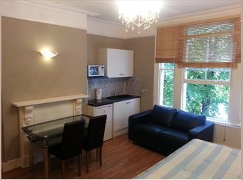A large double semi-studio flat situated in Hammersmith