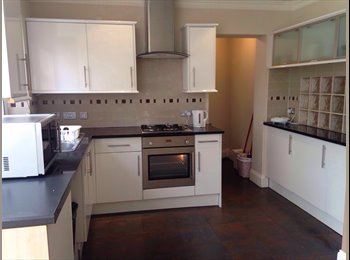 p next to WEMBLEY central station NICE single room