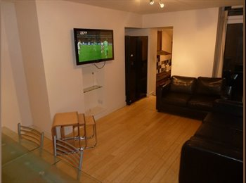 FANTASTIC 6 BED UPPER FLAT FOR PROFESSIONALS - FROM ONLY...